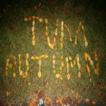 tvm autumn